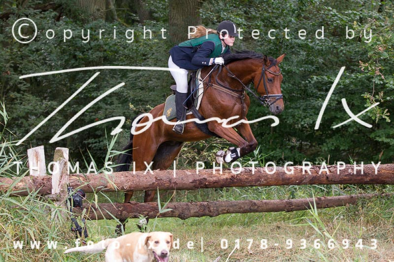 Dateiname: 2012_09_08_Jagd_Gartow-065 - Bild  58 von 507 in der Galerie - höchste verfügbare Auflösung: 4187 x 2793 px