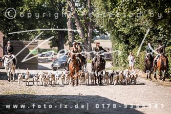 2015_08_22_Basthorst_Damenjagd-011.jpg