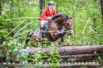 2015_09_06_Jagd_Dreilingen-087.jpg