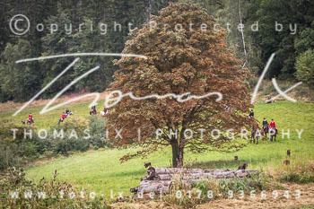 2015_09_20_Jagd_Goslar-060.jpg