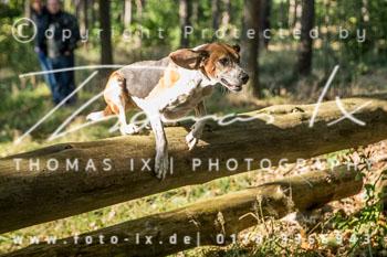 2015_10_11_Jagd_Meitze-020.jpg