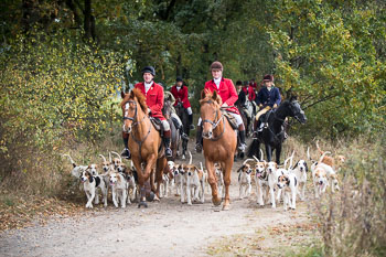 2016_10_15_Cross_Country_Jesteburg-042.jpg