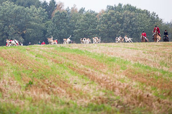 2016_10_15_Cross_Country_Jesteburg-078.jpg