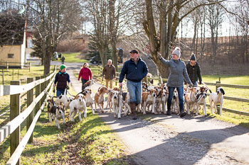 2016_02_26_Walking_the_hounds_Moen-037.jpg