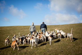 2016_02_26_Walking_the_hounds_Moen-041.jpg