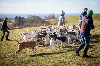 2016_02_26_Walking_the_hounds_Moen-044.jpg