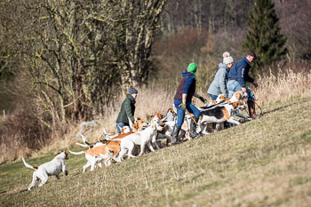 2016_02_26_Walking_the_hounds_Moen-053.jpg