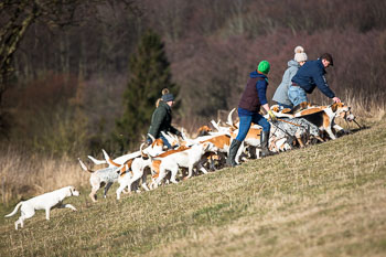 2016_02_26_Walking_the_hounds_Moen-054.jpg