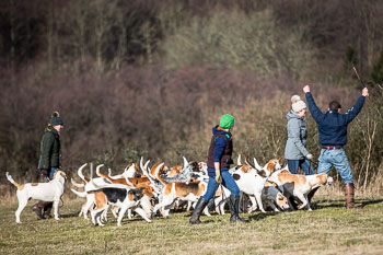 2016_02_26_Walking_the_hounds_Moen-055.jpg
