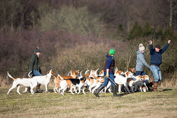 2016_02_26_Walking_the_hounds_Moen-056.jpg