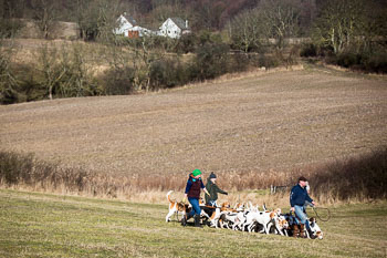 2016_02_26_Walking_the_hounds_Moen-057.jpg