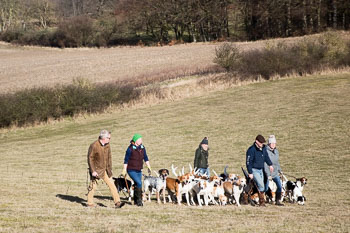 2016_02_26_Walking_the_hounds_Moen-059.jpg