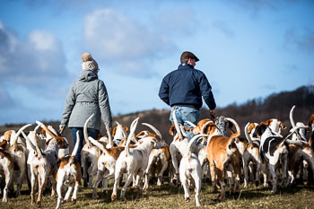 2016_02_26_Walking_the_hounds_Moen-071.jpg