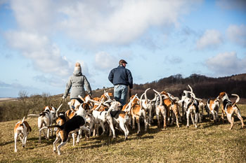 2016_02_26_Walking_the_hounds_Moen-073.jpg