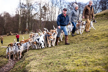 2016_02_26_Walking_the_hounds_Moen-084.jpg