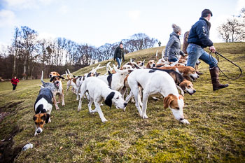 2016_02_26_Walking_the_hounds_Moen-085.jpg