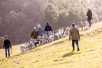 2016_02_26_Walking_the_hounds_Moen-088.jpg