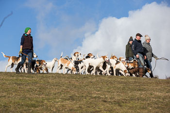 2016_02_26_Walking_the_hounds_Moen-093.jpg