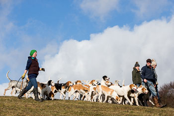 2016_02_26_Walking_the_hounds_Moen-094.jpg