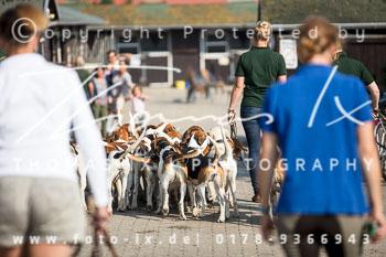 2017_09_04_Hundearbeit_NM_Norderney-013.jpg