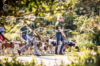 2017_09_04_Hundearbeit_NM_Norderney-018.jpg