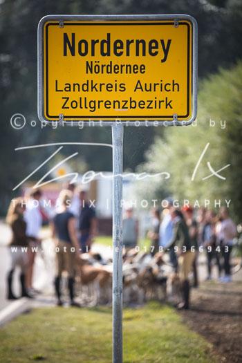 2017_09_04_Hundearbeit_NM_Norderney-029.jpg