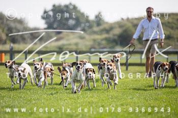 2017_09_04_Hundearbeit_NM_Norderney-044.jpg