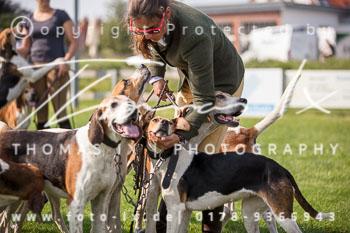 2017_09_04_Hundearbeit_NM_Norderney-060.jpg