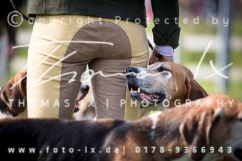 2017_09_04_Hundearbeit_NM_Norderney-062.jpg