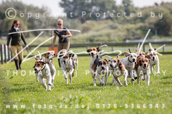 2017_09_04_Hundearbeit_NM_Norderney-076.jpg