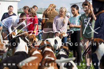2017_09_04_Hundearbeit_NM_Norderney-078.jpg
