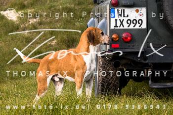 2017_09_04_Hundearbeit_NM_Norderney-089.jpg