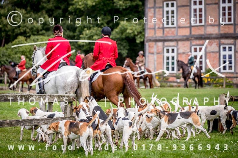 Dateiname: 2017_09_17_Jagd_Schnellenberg-024 - Bild  24 von 426 in der Galerie - höchste verfügbare Auflösung: 5029 x 3353 px
