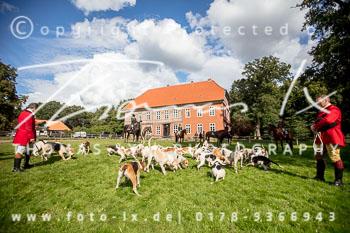 2017_09_17_Jagd_Schnellenberg-369.jpg