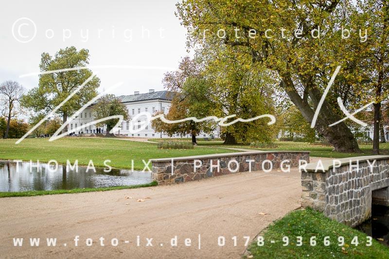 Dateiname: 2017_10_28_Jagd_Neuhardenberg-002 - Bild  2 von 509 in der Galerie - höchste verfügbare Auflösung: 5472 x 3648 px