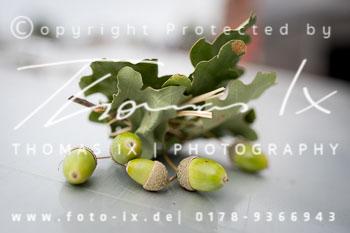 2018_08_19_Jagd_Rohlfshagen-001.jpg