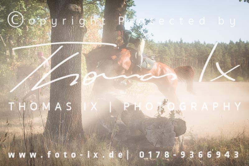 Dateiname: 2018_09_02_NM_Dreilingen-047 - Bild  47 von 685 in der Galerie - höchste verfügbare Auflösung: 2990 x 1993 px